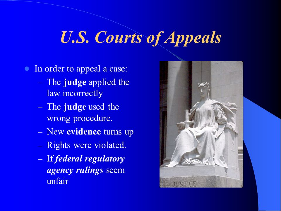 U.S. Courts of Appeals In order to appeal a case: