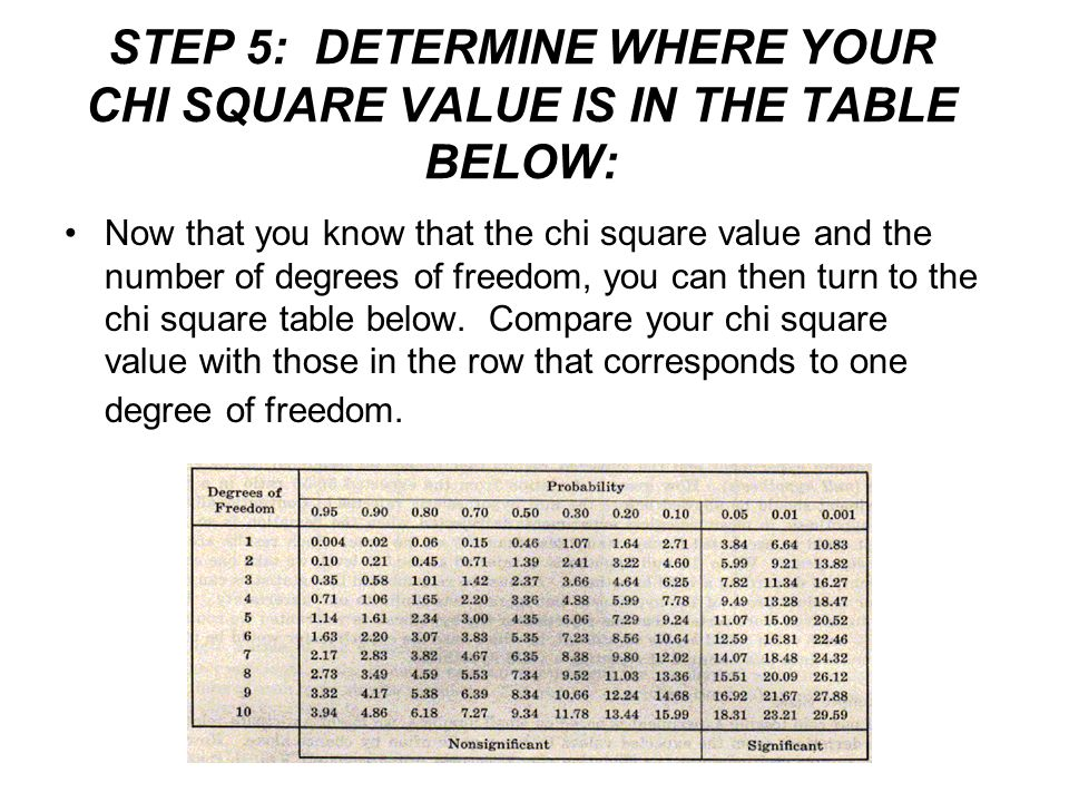 STEP 5: DETERMINE WHERE YOUR CHI SQUARE VALUE IS IN THE TABLE BELOW:
