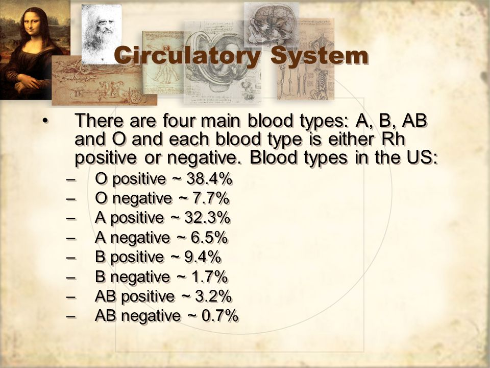 Circulatory System There are four main blood types: A, B, AB and O and each blood type is either Rh positive or negative. Blood types in the US: