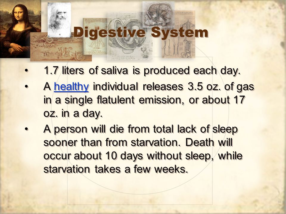Digestive System 1.7 liters of saliva is produced each day.