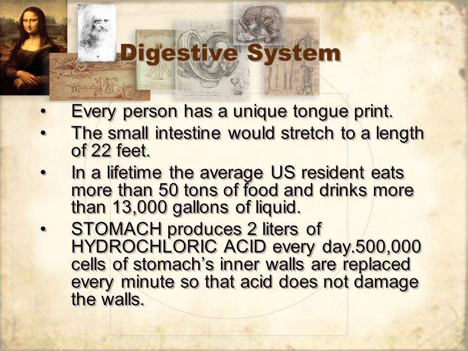 Digestive System Every person has a unique tongue print.