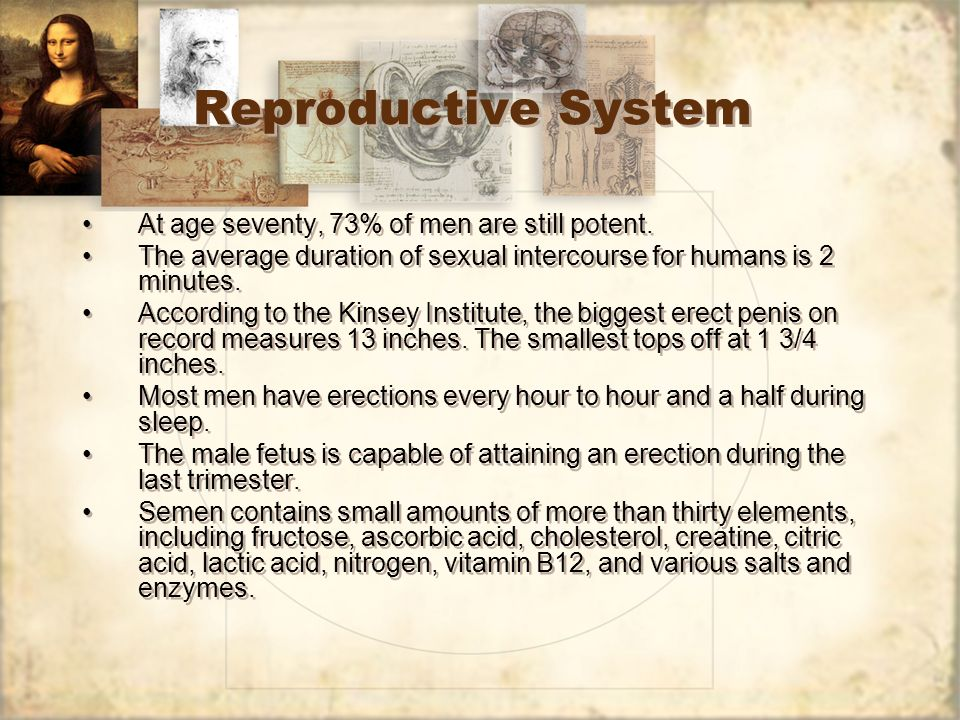 Reproductive System At age seventy, 73% of men are still potent.