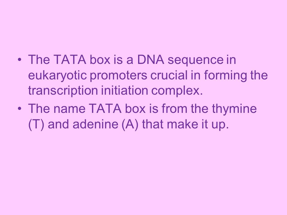 The TATA box is a DNA sequence in eukaryotic promoters crucial in forming the transcription initiation complex.