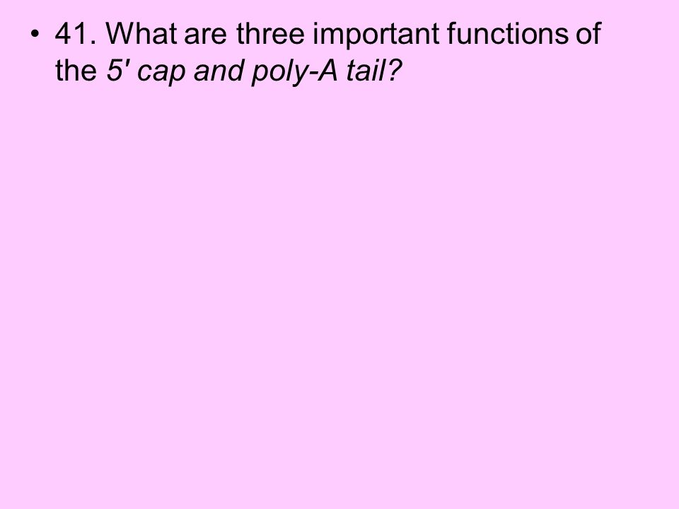 41. What are three important functions of the 5 cap and poly-A tail