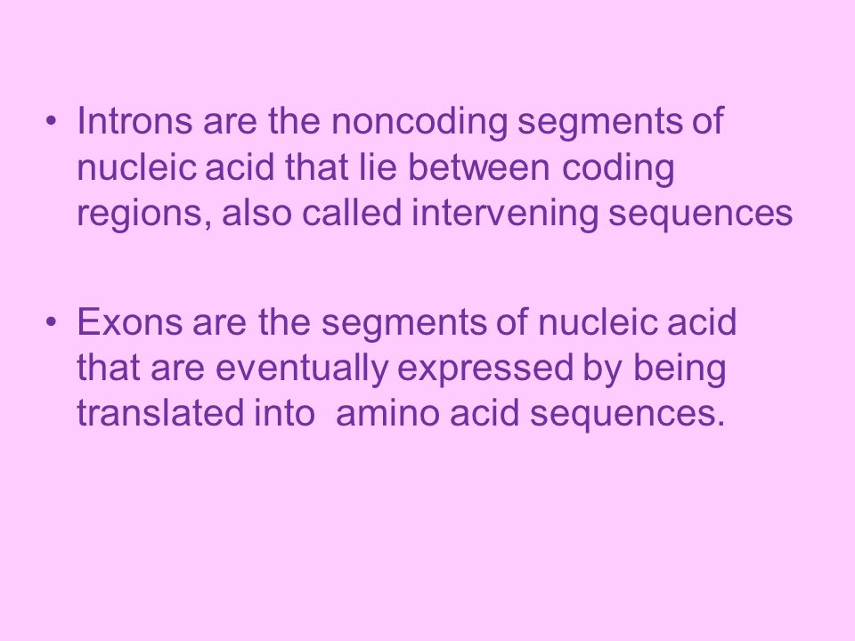 Introns are the noncoding segments of nucleic acid that lie between coding regions, also called intervening sequences
