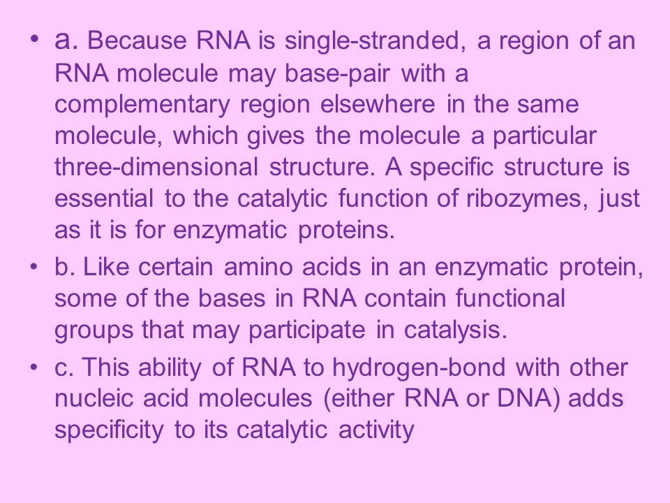 a. Because RNA is single-stranded, a region of an RNA molecule may base-pair with a complementary region elsewhere in the same molecule, which gives the molecule a particular three-dimensional structure. A specific structure is essential to the catalytic function of ribozymes, just as it is for enzymatic proteins.