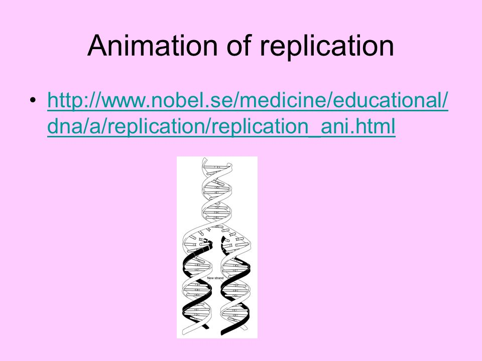 Animation of replication