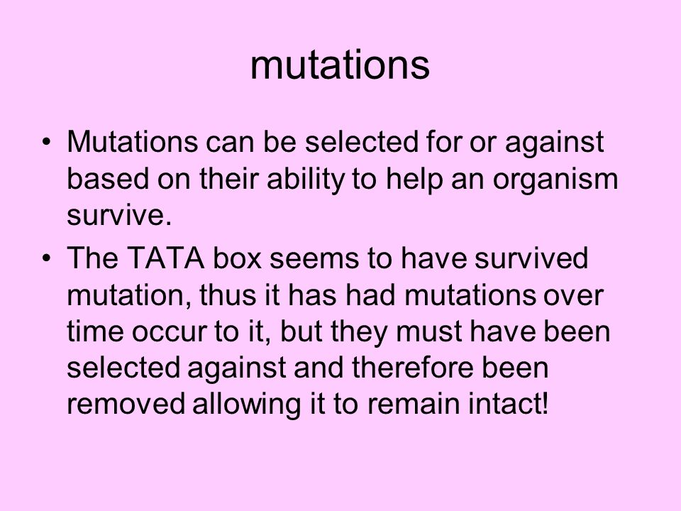 mutations Mutations can be selected for or against based on their ability to help an organism survive.