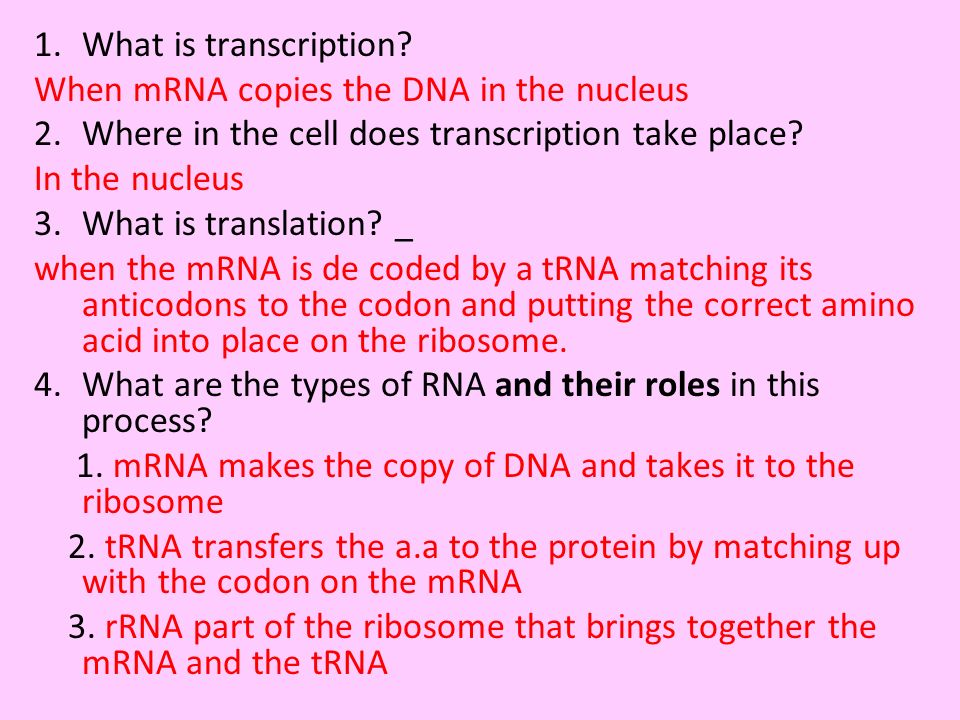 What is transcription When mRNA copies the DNA in the nucleus. Where in the cell does transcription take place