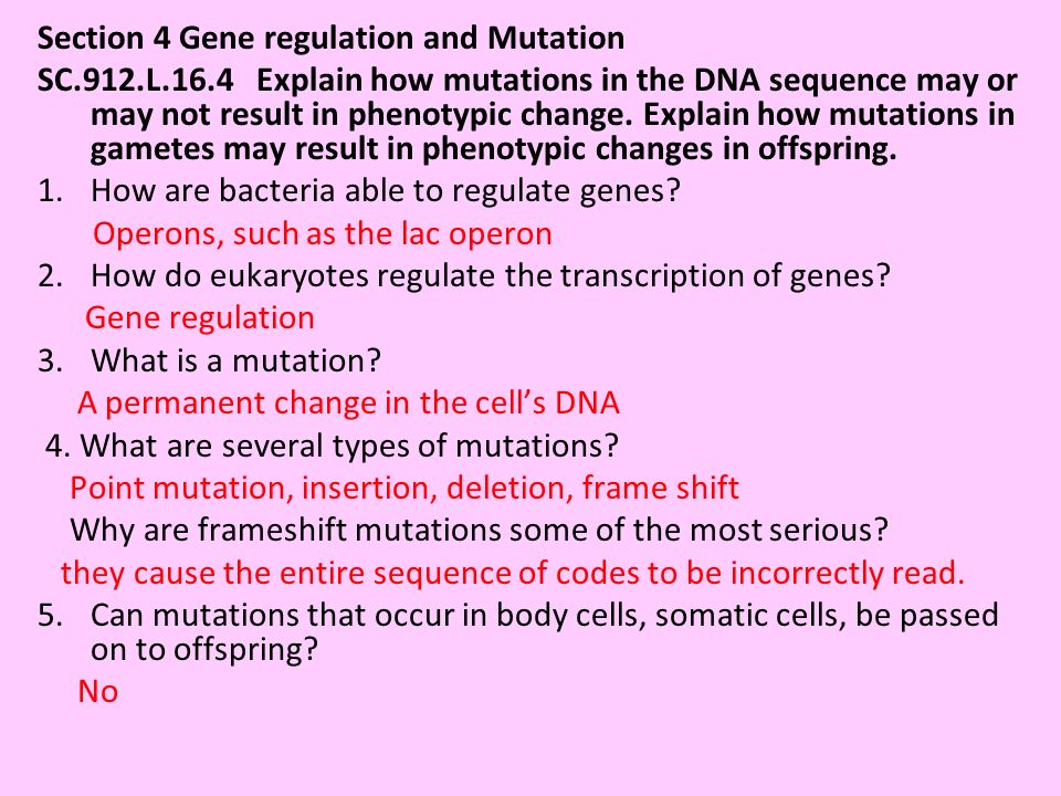 Section 4 Gene regulation and Mutation