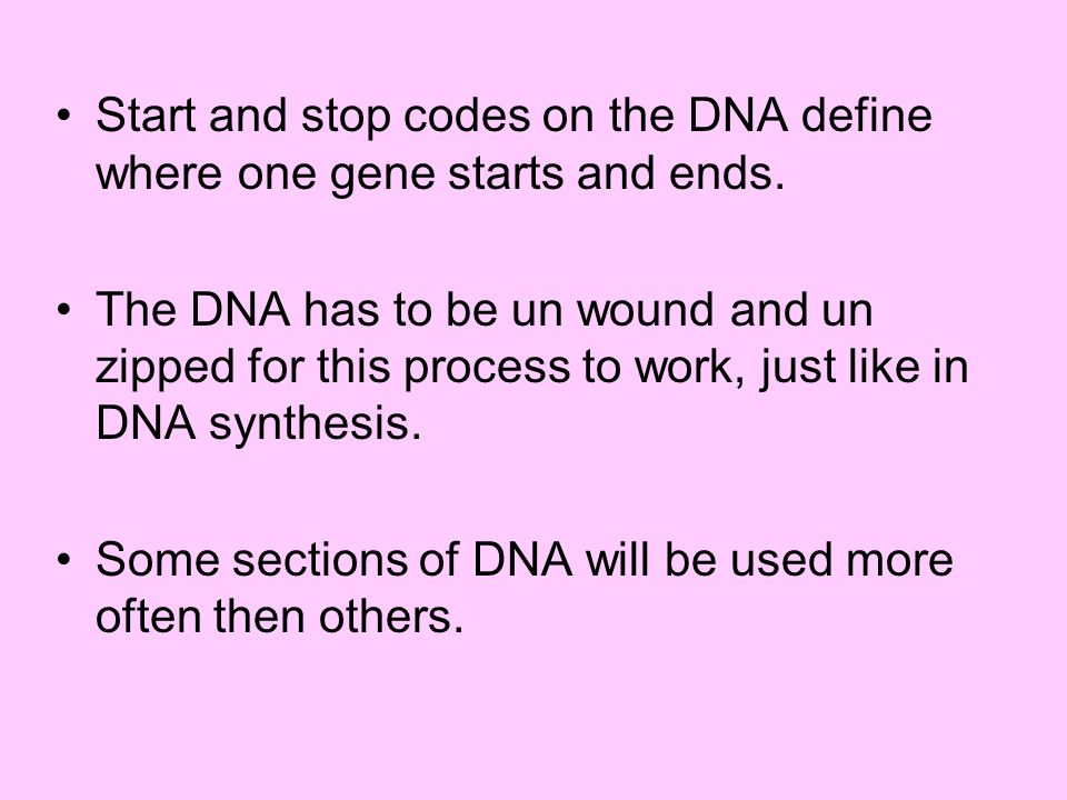 Start and stop codes on the DNA define where one gene starts and ends.