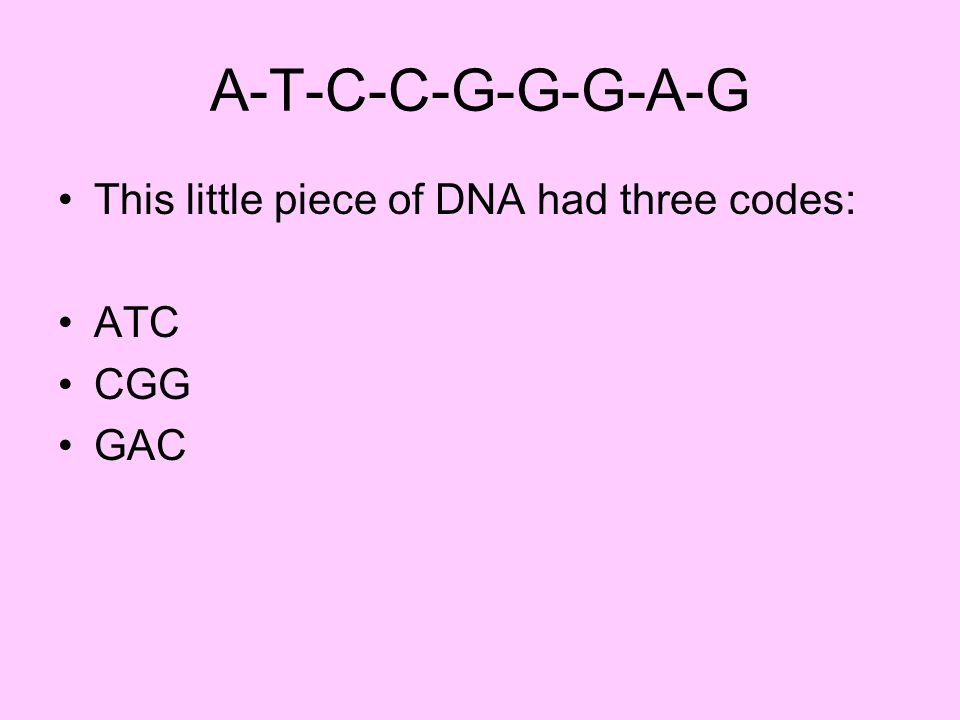 A-T-C-C-G-G-G-A-G This little piece of DNA had three codes: ATC CGG