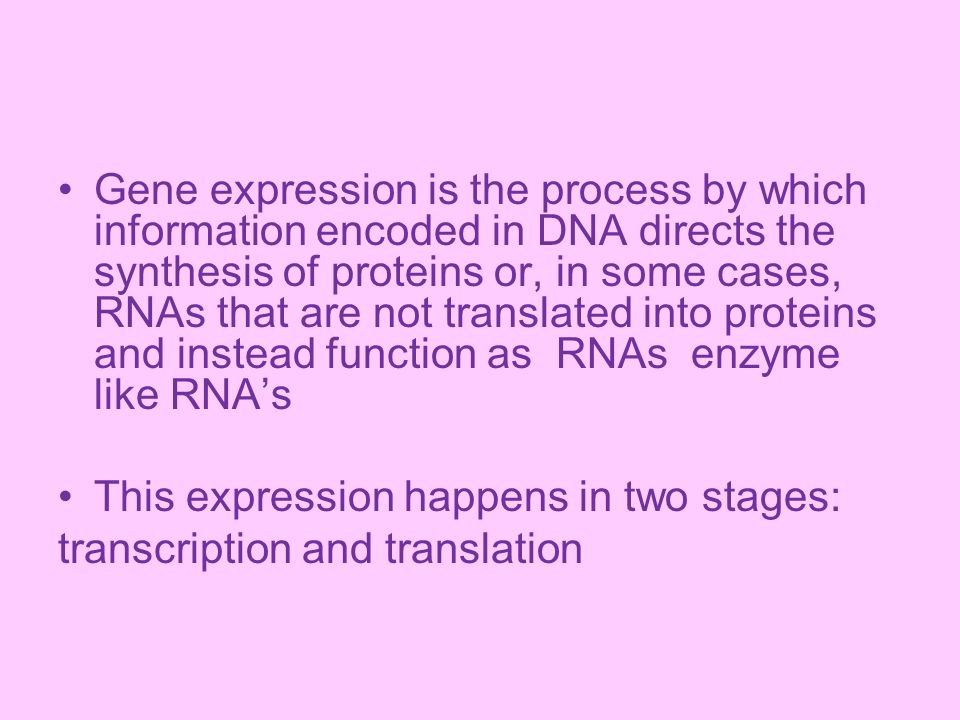Gene expression is the process by which information encoded in DNA directs the synthesis of proteins or, in some cases, RNAs that are not translated into proteins and instead function as RNAs enzyme like RNA's