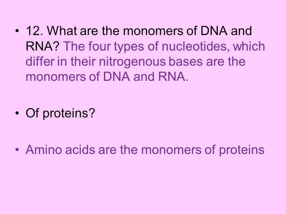 12. What are the monomers of DNA and RNA