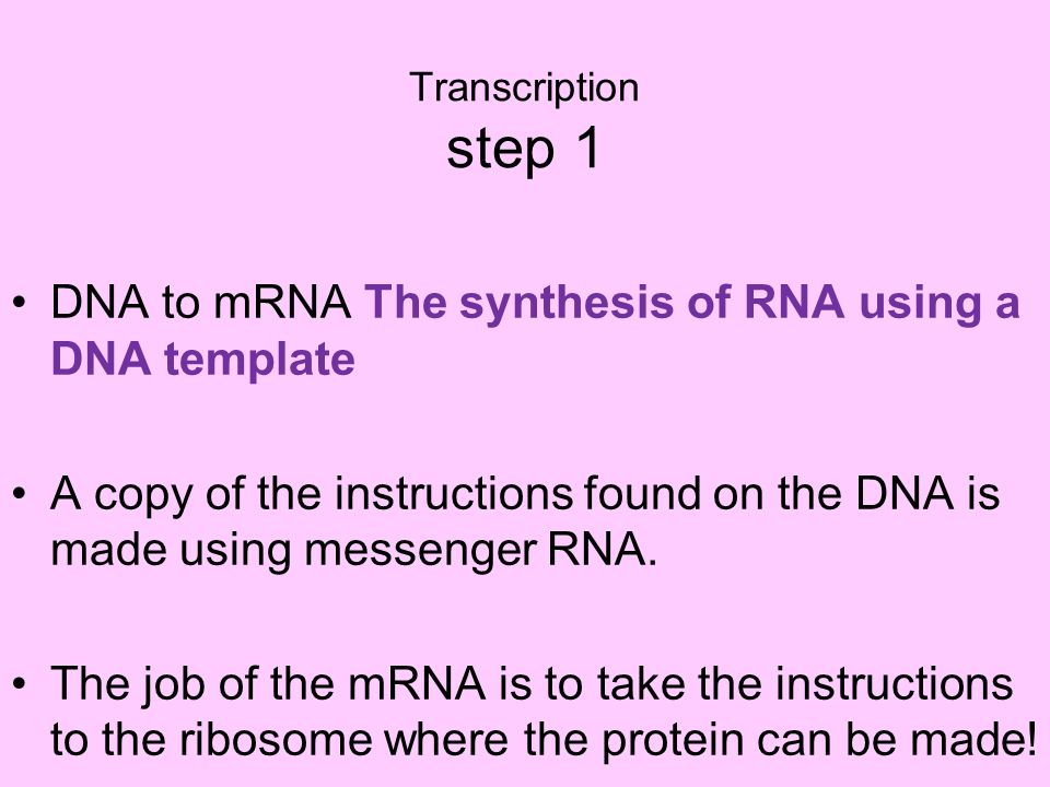 DNA to mRNA The synthesis of RNA using a DNA template