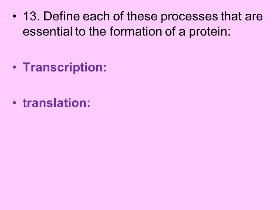 13. Define each of these processes that are essential to the formation of a protein: