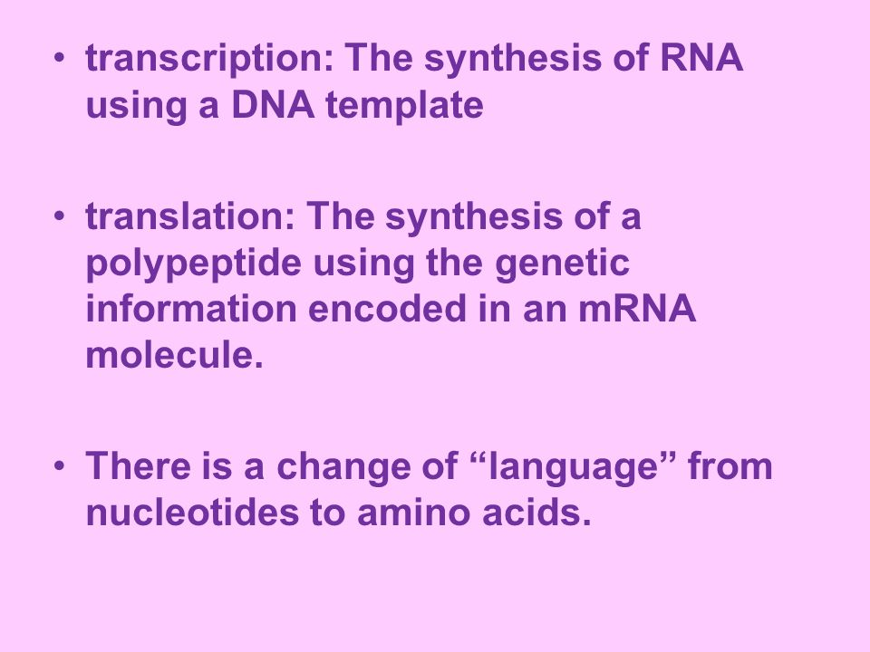 transcription: The synthesis of RNA using a DNA template