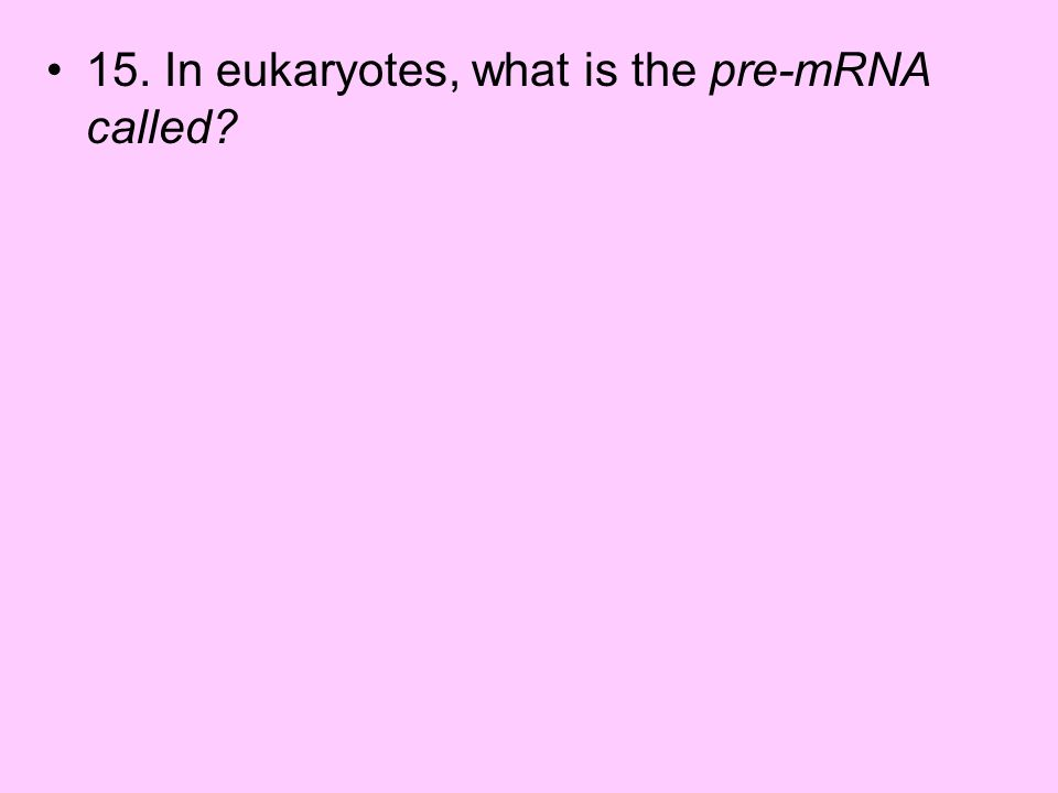 15. In eukaryotes, what is the pre-mRNA called