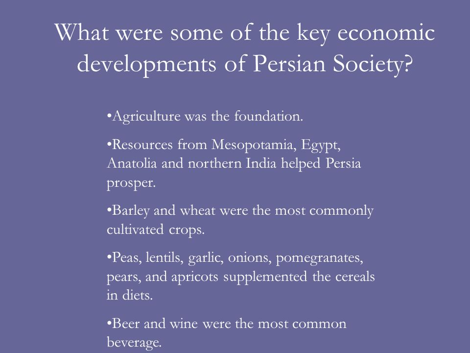 What were some of the key economic developments of Persian Society