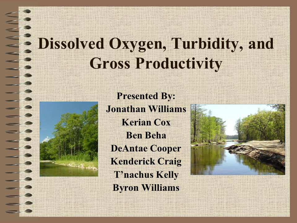 Dissolved Oxygen, Turbidity, and Gross Productivity