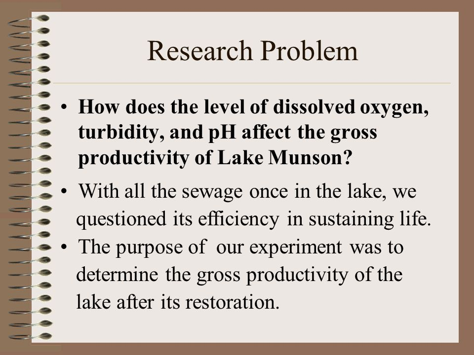 Research Problem How does the level of dissolved oxygen, turbidity, and pH affect the gross productivity of Lake Munson