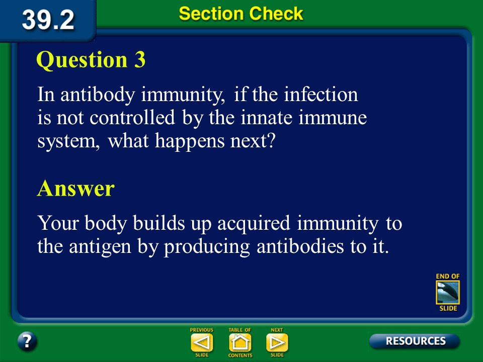 Question 3 In antibody immunity, if the infection is not controlled by the innate immune system, what happens next
