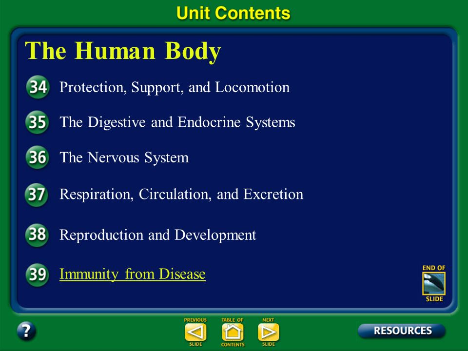 The Human Body Protection, Support, and Locomotion
