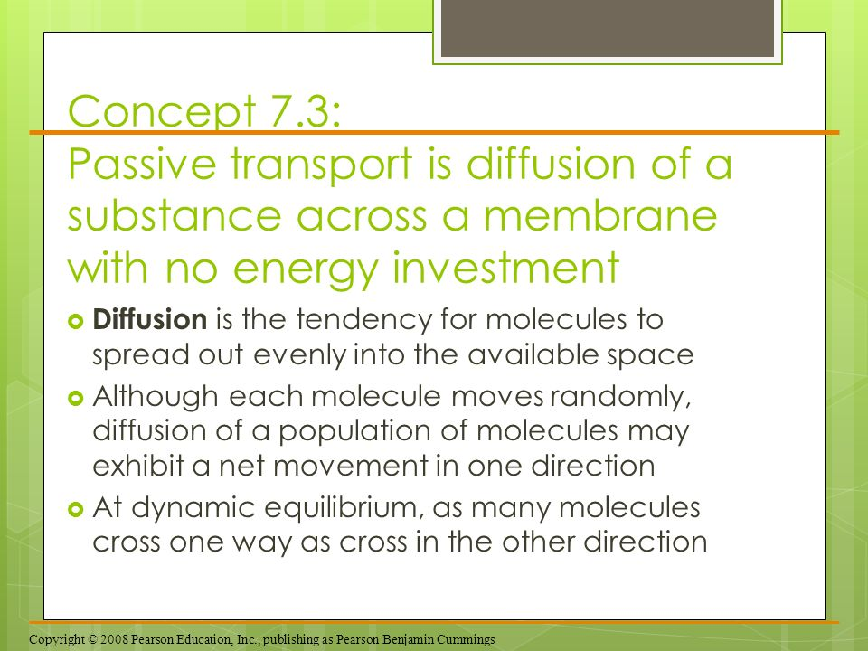 Concept 7.3: Passive transport is diffusion of a substance across a membrane with no energy investment