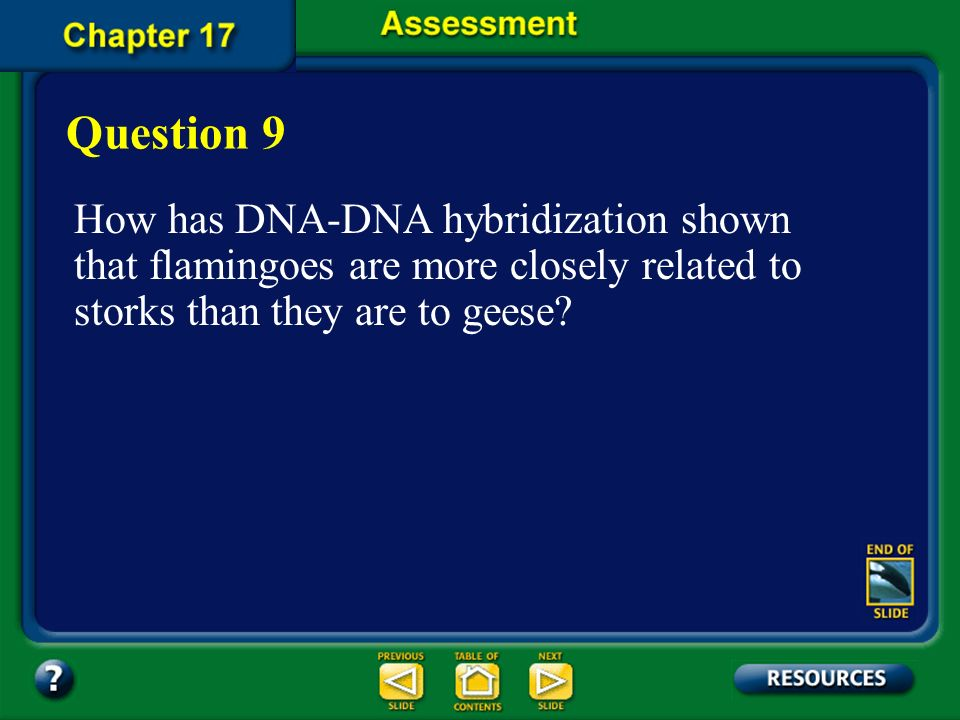 Question 9 How has DNA-DNA hybridization shown that flamingoes are more closely related to storks than they are to geese