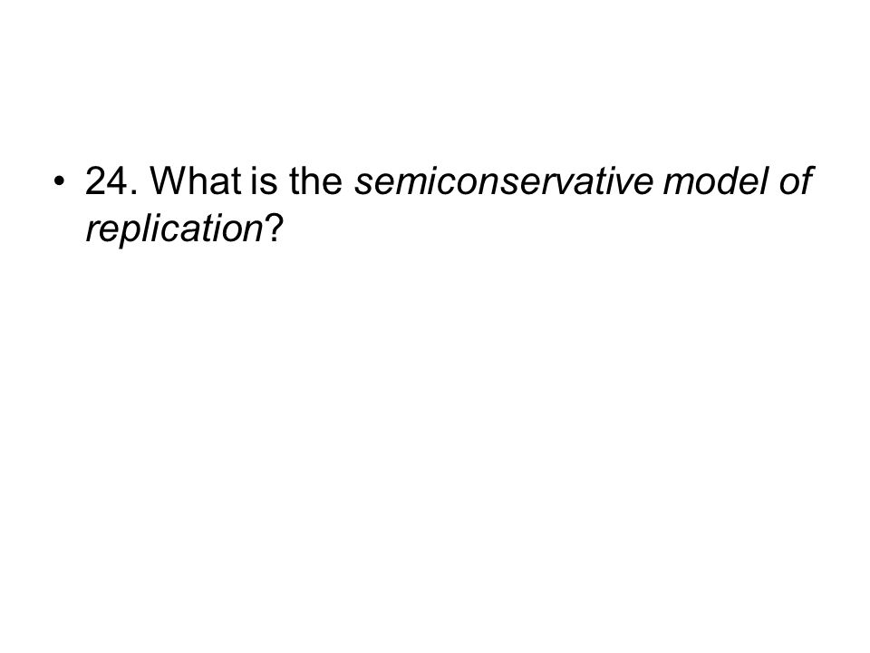 24. What is the semiconservative model of replication