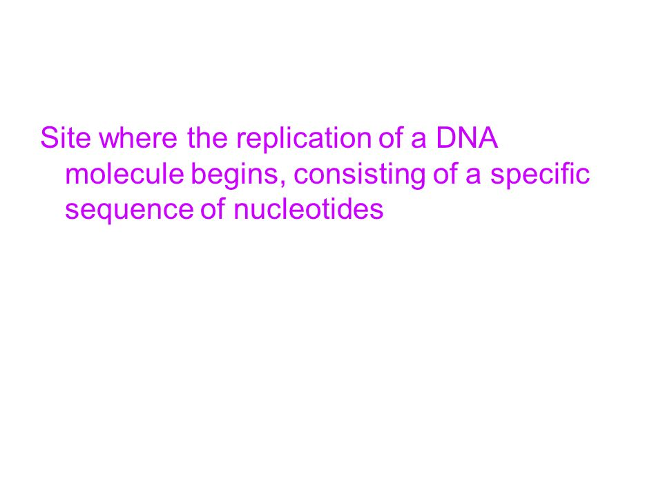 Site where the replication of a DNA molecule begins, consisting of a specific sequence of nucleotides