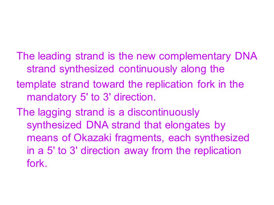 The leading strand is the new complementary DNA strand synthesized continuously along the