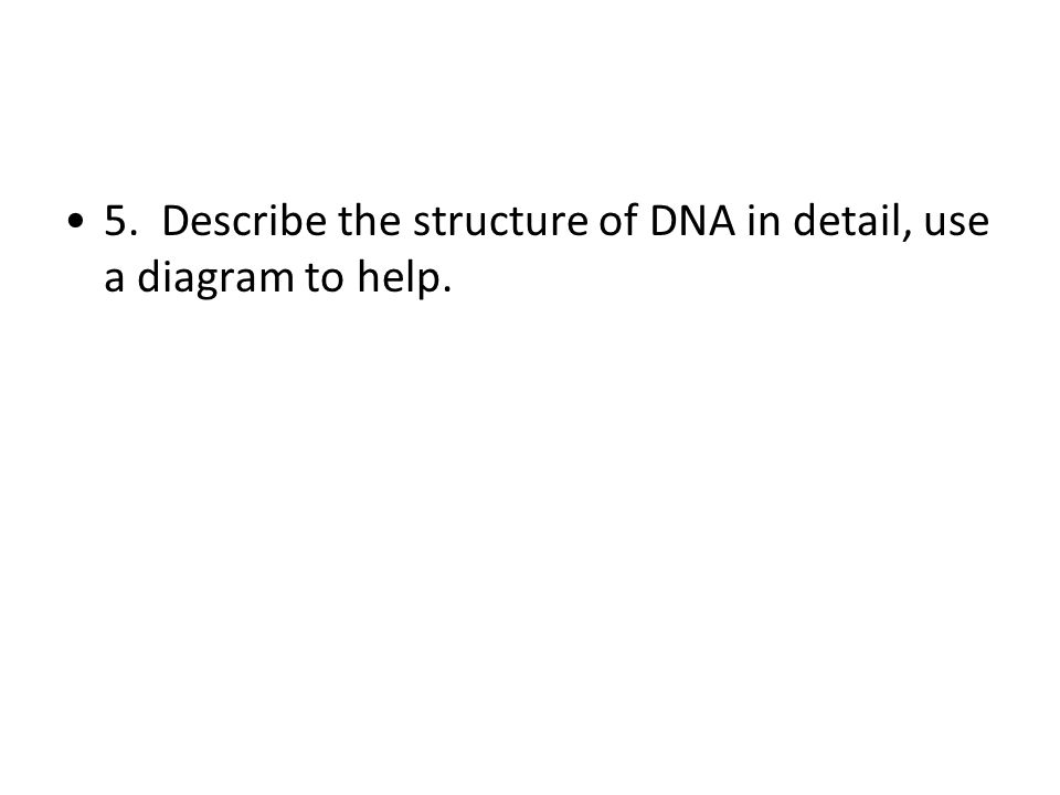 5. Describe the structure of DNA in detail, use a diagram to help.
