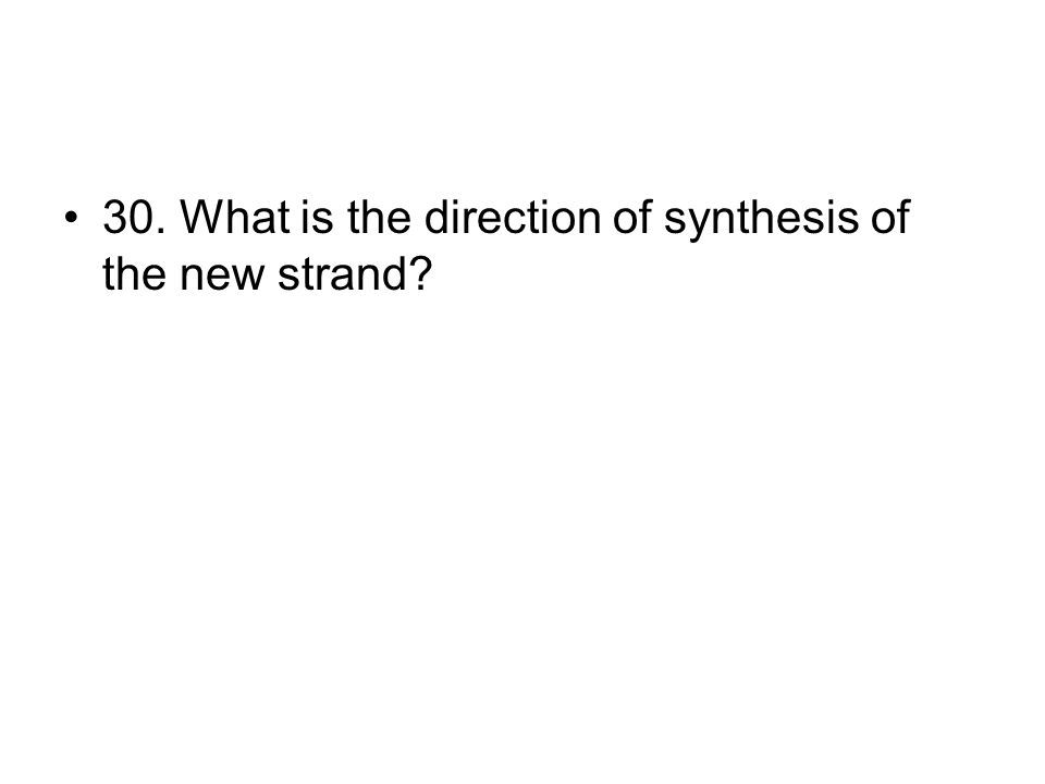 30. What is the direction of synthesis of the new strand