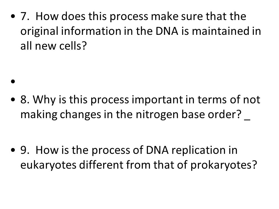 7. How does this process make sure that the original information in the DNA is maintained in all new cells