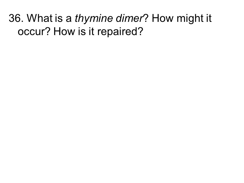 36. What is a thymine dimer How might it occur How is it repaired