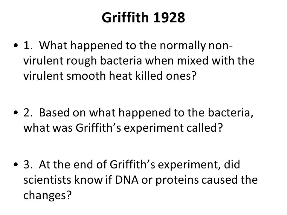 Griffith 1928 1. What happened to the normally non-virulent rough bacteria when mixed with the virulent smooth heat killed ones