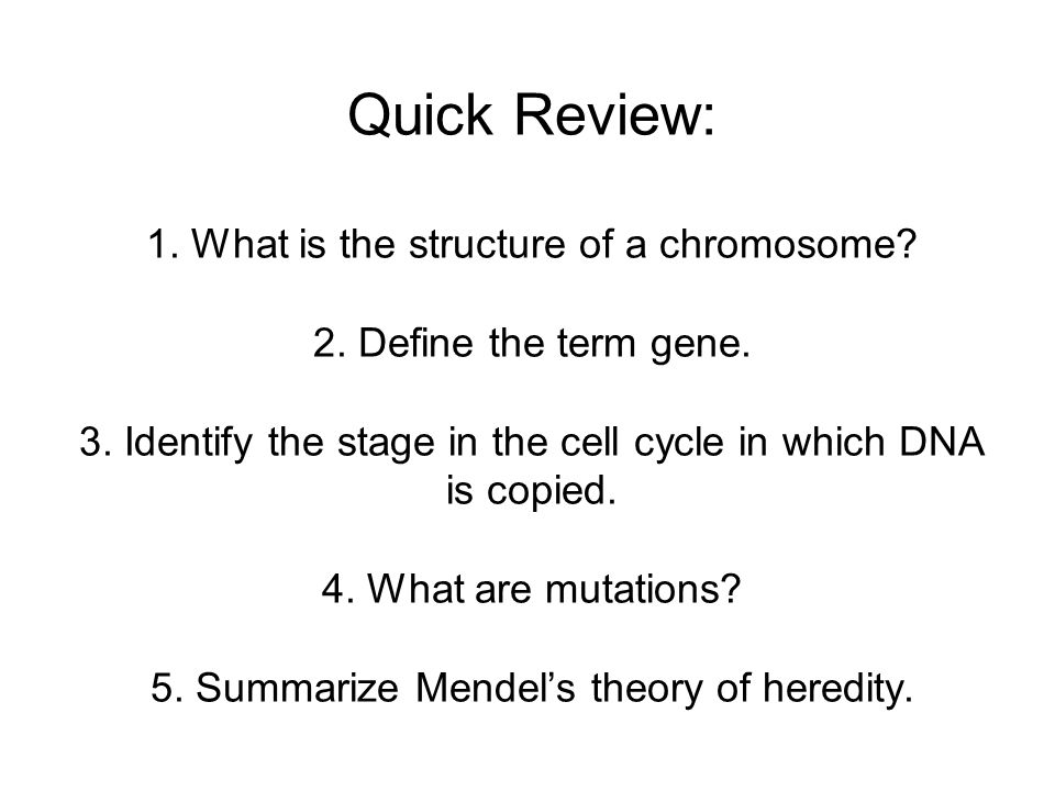 Quick Review: 1. What is the structure of a chromosome. 2