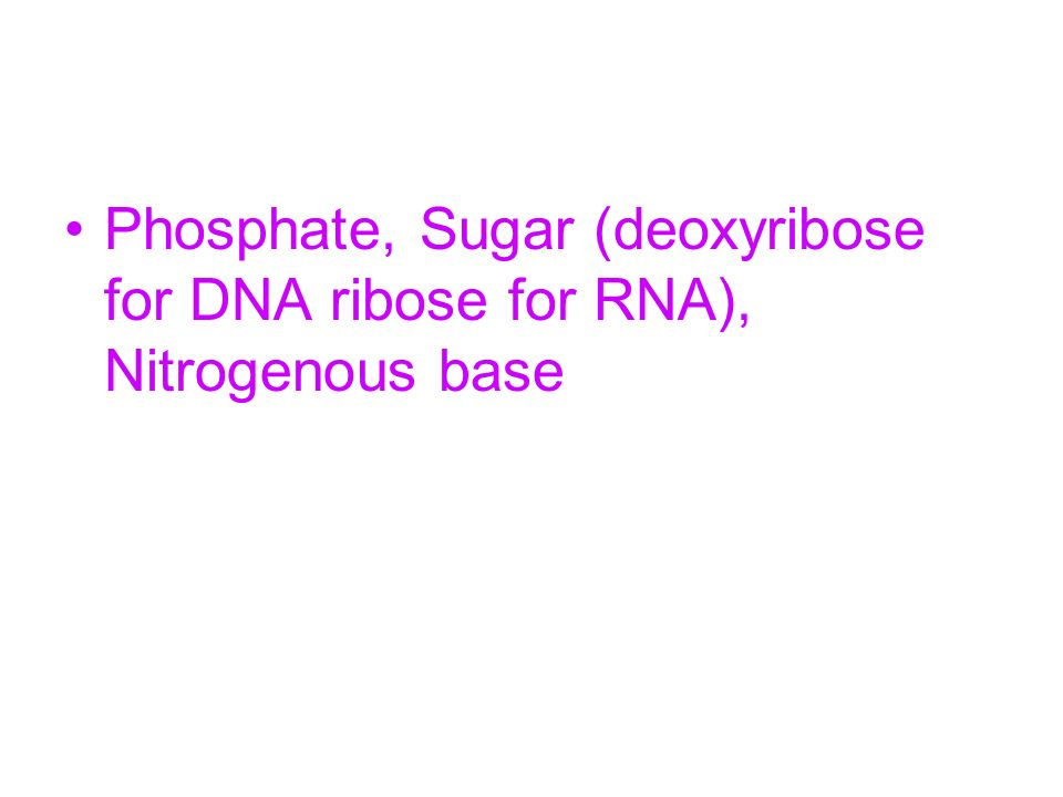 Phosphate, Sugar (deoxyribose for DNA ribose for RNA), Nitrogenous base