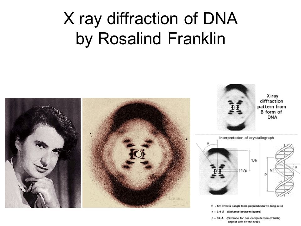 X ray diffraction of DNA by Rosalind Franklin