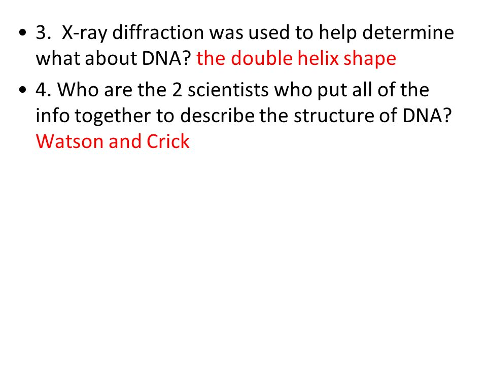 3. X-ray diffraction was used to help determine what about DNA