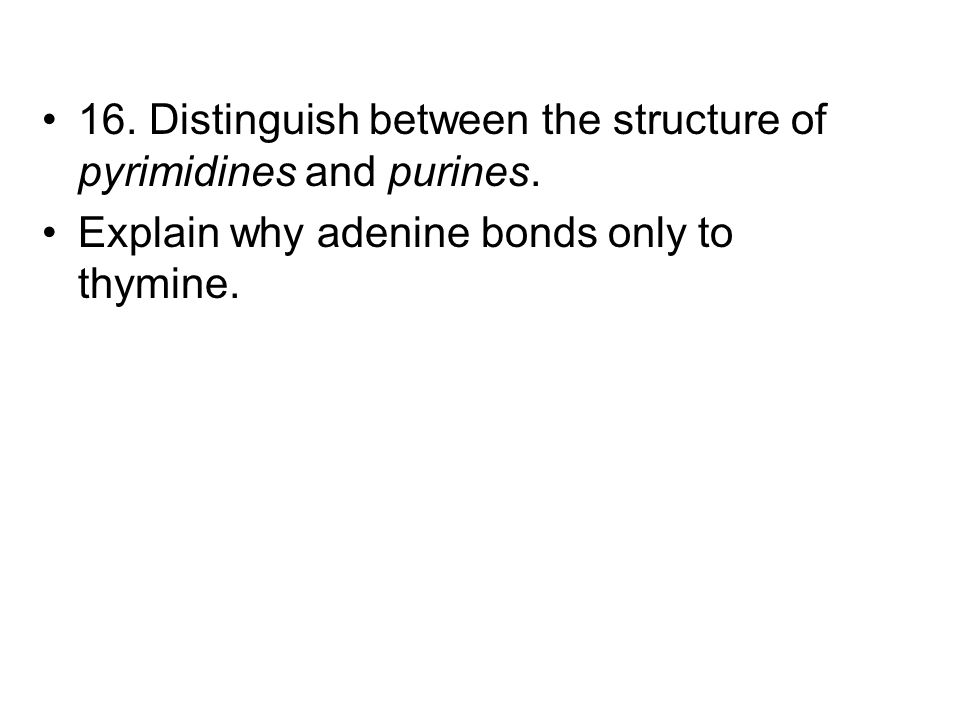 16. Distinguish between the structure of pyrimidines and purines.
