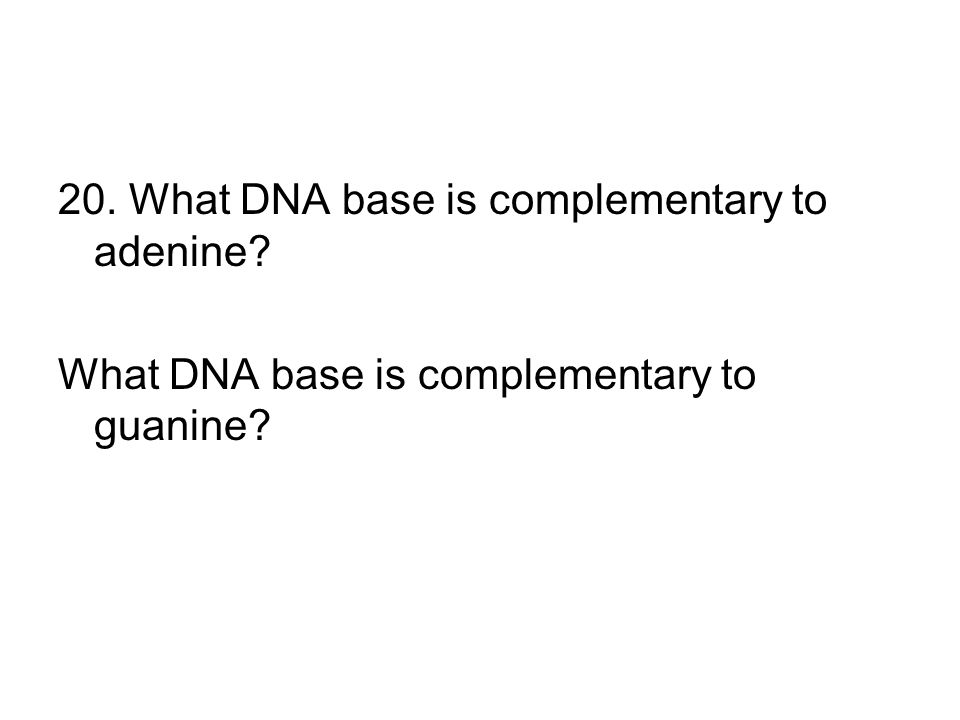 20. What DNA base is complementary to adenine