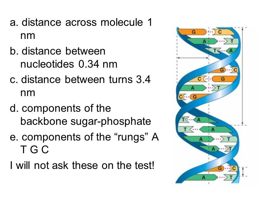 a. distance across molecule 1 nm