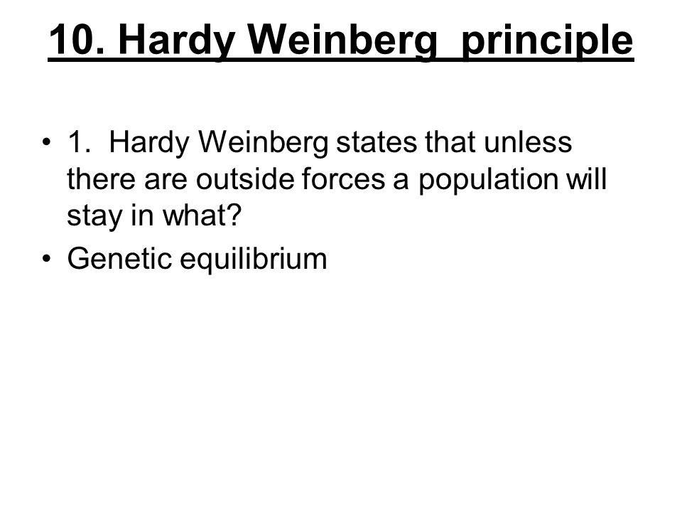 10. Hardy Weinberg principle