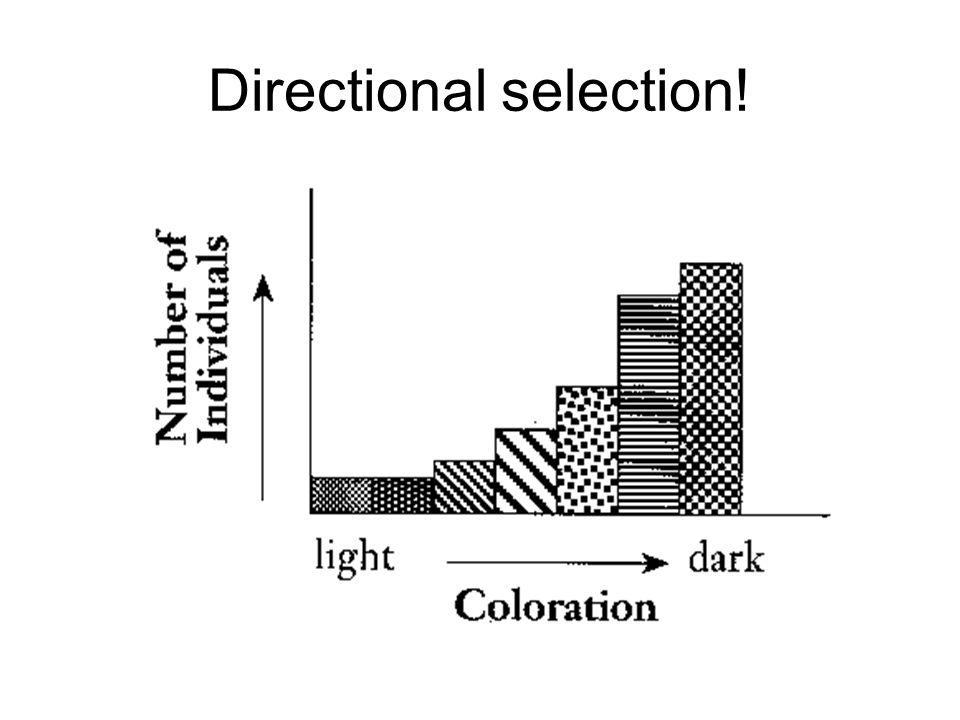 Directional selection!
