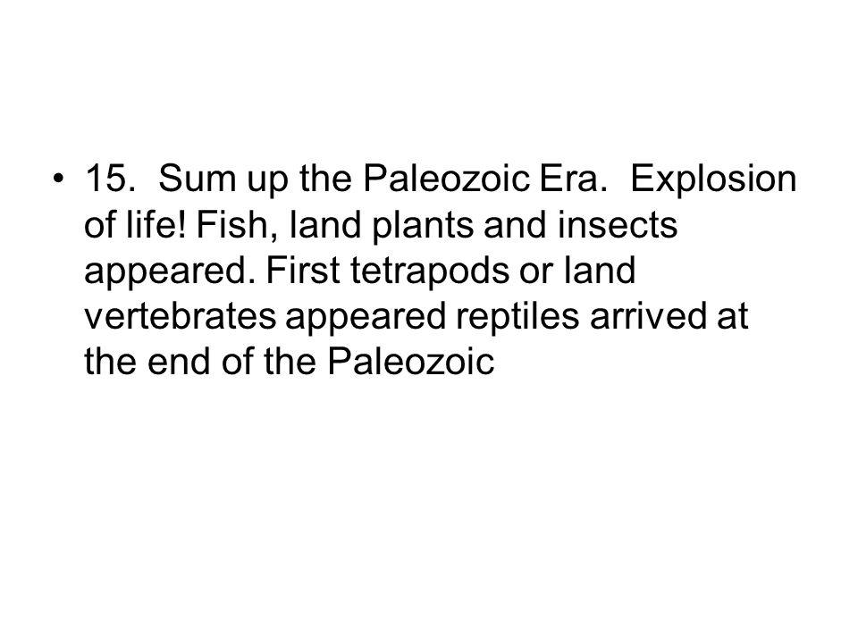 15. Sum up the Paleozoic Era. Explosion of life