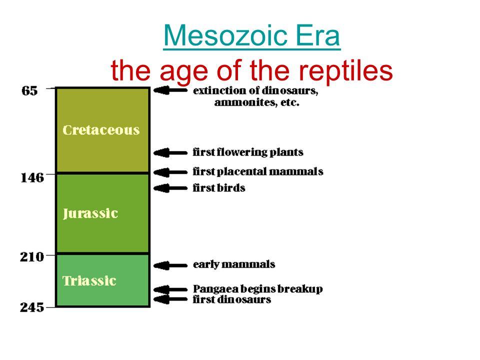 Mesozoic Era the age of the reptiles