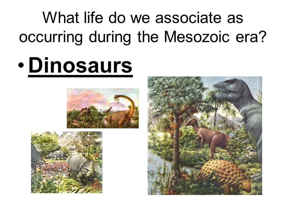 What life do we associate as occurring during the Mesozoic era