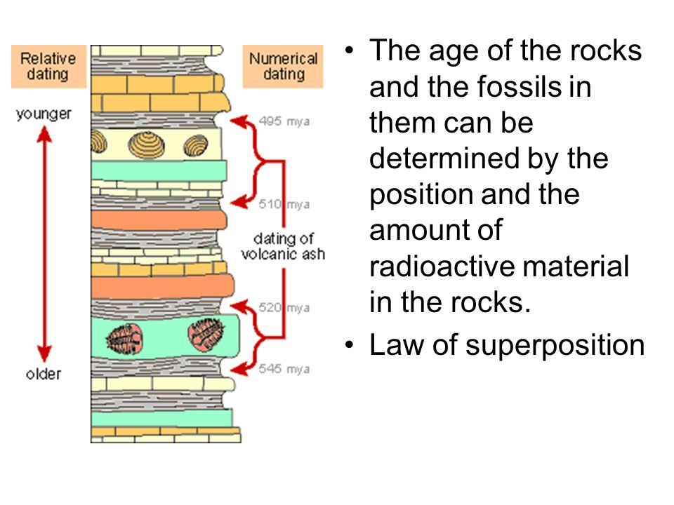 The age of the rocks and the fossils in them can be determined by the position and the amount of radioactive material in the rocks.